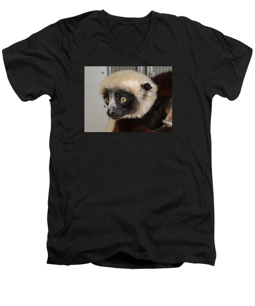 A Very Curious Sifaka Men's V-Neck T-Shirt