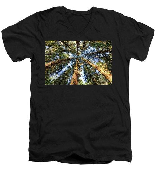 Big Trees In Olympic National Park Men's V-Neck T-Shirt