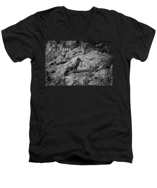 Bighorn Sheep Ewe On Wolf Creek Pass Men's V-Neck T-Shirt