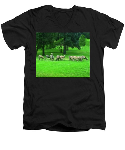 Men's V-Neck T-Shirt featuring the digital art Bighorn Sheep Ewes  by Chris Flees