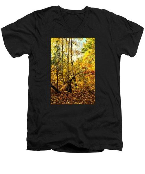 Birch Autumn Men's V-Neck T-Shirt by Henryk Gorecki
