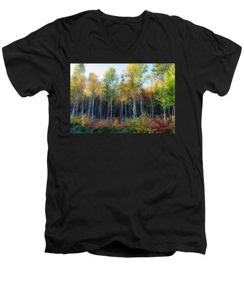 Birch Trees Turn To Gold Men's V-Neck T-Shirt