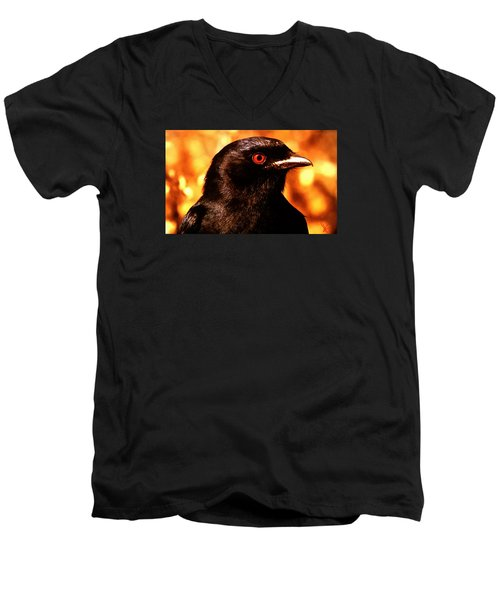 Bird Friend  Men's V-Neck T-Shirt