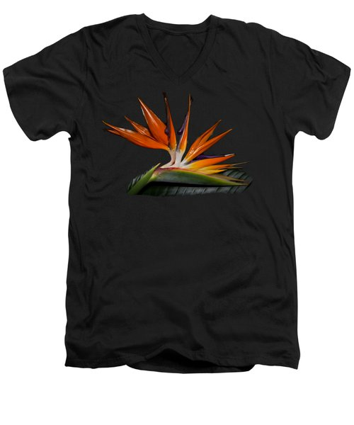 Men's V-Neck T-Shirt featuring the photograph Bird In Paradise by Debra and Dave Vanderlaan