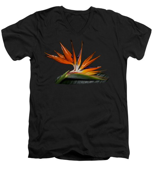 Bird In Paradise Men's V-Neck T-Shirt