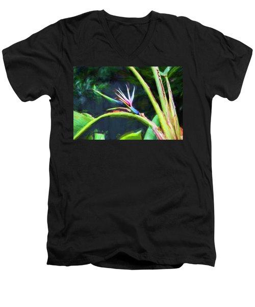 Bird Of Paradise Strelitzia Reginae 003 Men's V-Neck T-Shirt