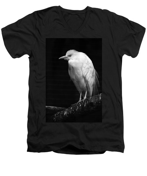 Birds Of A Feather Men's V-Neck T-Shirt