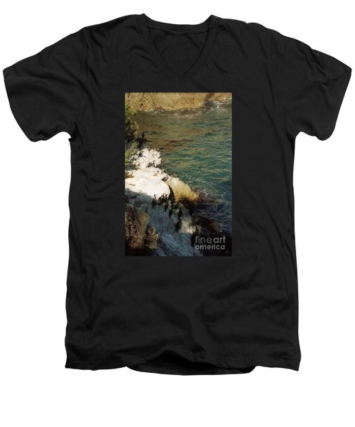 Birds On Rock Above Pacific Ocean Men's V-Neck T-Shirt by Ted Pollard