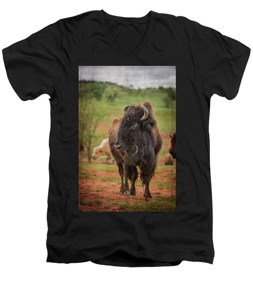 Men's V-Neck T-Shirt featuring the photograph Bison 5 by Joye Ardyn Durham