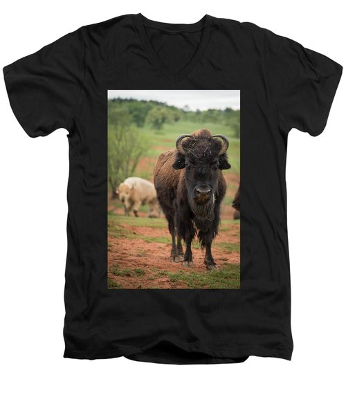 Men's V-Neck T-Shirt featuring the photograph Bison 6 by Joye Ardyn Durham