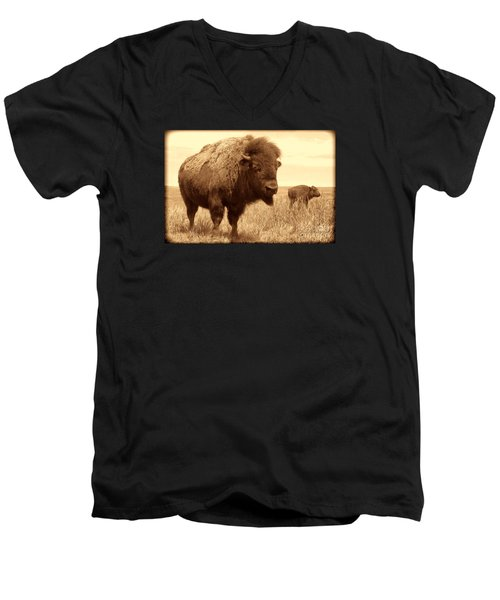 Bison And Calf Men's V-Neck T-Shirt by American West Legend By Olivier Le Queinec