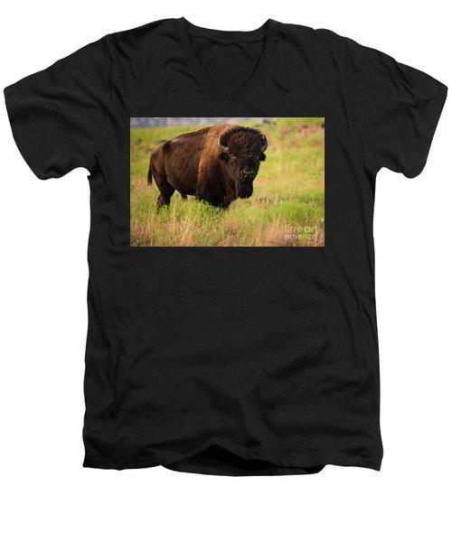 Bison Prime Men's V-Neck T-Shirt