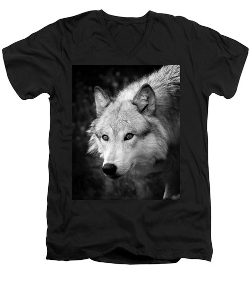 Black And White Wolf Men's V-Neck T-Shirt by Steve McKinzie