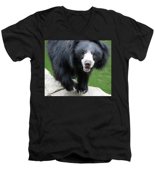 Sun Bear Men's V-Neck T-Shirt by Inspirational Photo Creations Audrey Woods