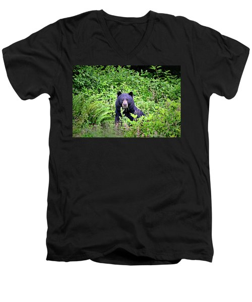 Men's V-Neck T-Shirt featuring the photograph Black Bear Eating His Veggies by Peggy Collins