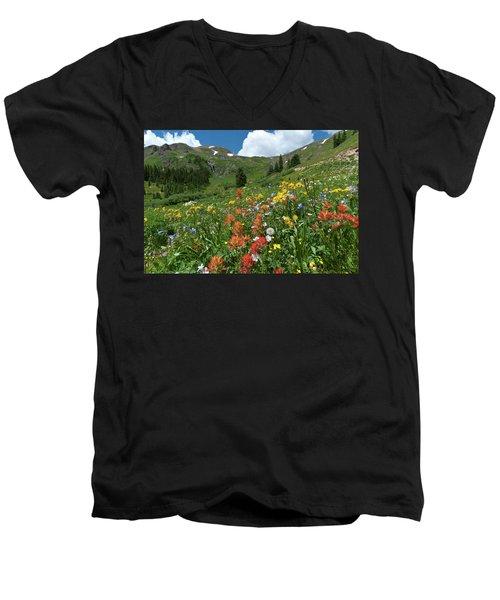 Black Bear Pass Landscape Men's V-Neck T-Shirt