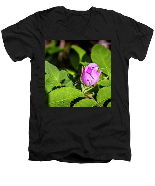Men's V-Neck T-Shirt featuring the photograph Black Bee On Approach by Darcy Michaelchuk
