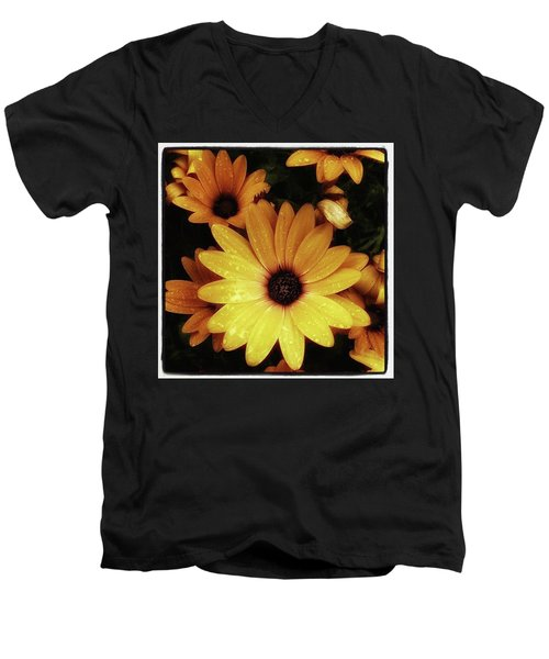 Men's V-Neck T-Shirt featuring the photograph Black Eyed Susans. Looks Like They're by Mr Photojimsf