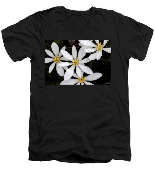 Sanguinaria Men's V-Neck T-Shirt by Skip Tribby