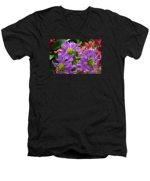 Men's V-Neck T-Shirt featuring the photograph Blooming Asters by Merton Allen