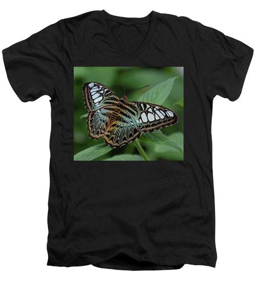 Blue Clipper Butterfly Open Men's V-Neck T-Shirt