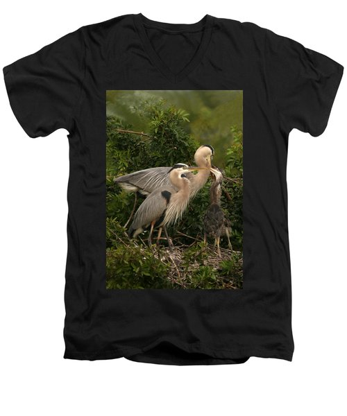 Men's V-Neck T-Shirt featuring the photograph Blue Heron Family by Shari Jardina