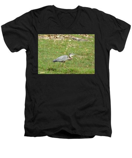 Blue Heron Men's V-Neck T-Shirt by Robin Regan