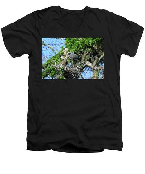 Men's V-Neck T-Shirt featuring the photograph Blue Heron Series Baby 1 by Deborah Benoit