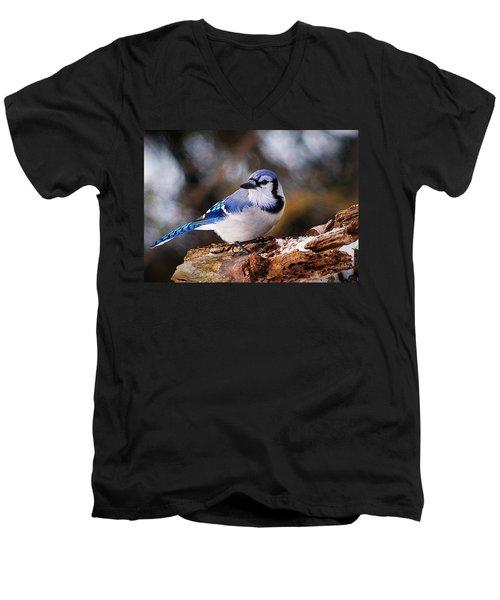 Blue Jay Day Men's V-Neck T-Shirt