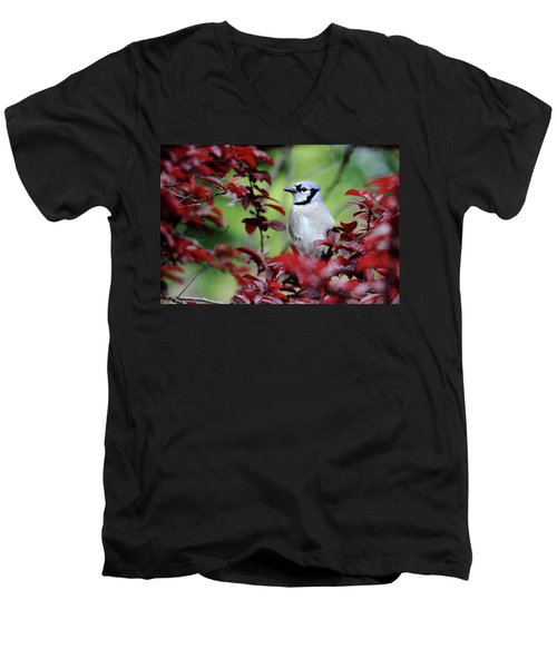 Blue Jay In The Plum Tree Men's V-Neck T-Shirt by Trina Ansel