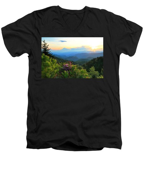 Blue Ridge Parkway And Rhododendron  Men's V-Neck T-Shirt