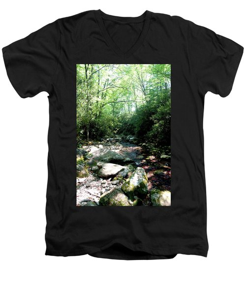 Men's V-Neck T-Shirt featuring the photograph Blue Ridge Parkway Stream by Meta Gatschenberger