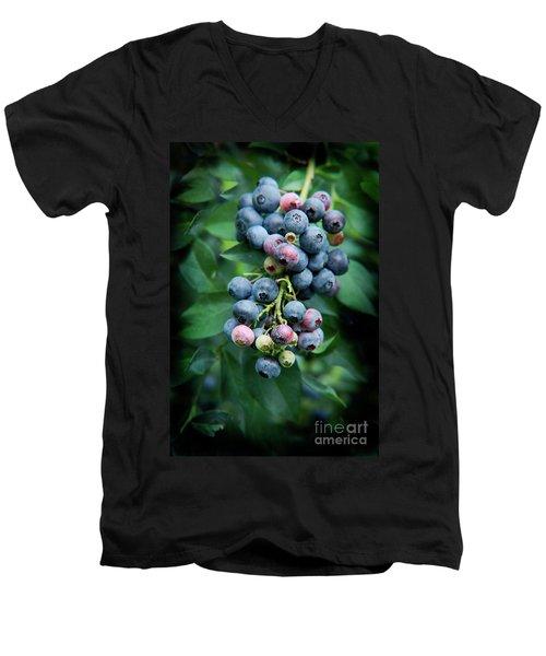 Blueberry Cluster Men's V-Neck T-Shirt