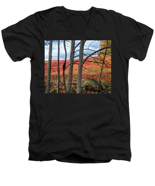 Blueberry Field Through The Wall - Cropped Men's V-Neck T-Shirt