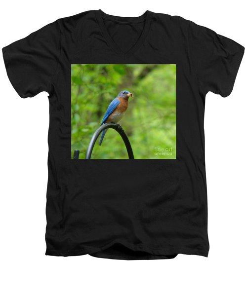 Bluebird Catches Worm Men's V-Neck T-Shirt