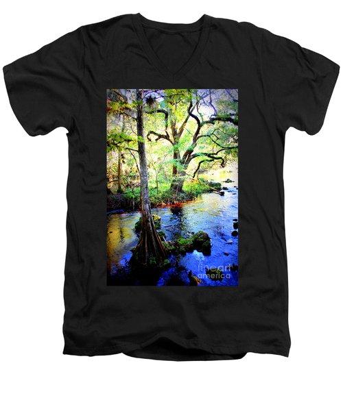 Blues In Florida Swamp Men's V-Neck T-Shirt