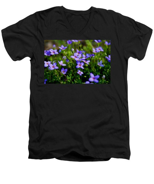 Men's V-Neck T-Shirt featuring the photograph Bluets by Kathryn Meyer