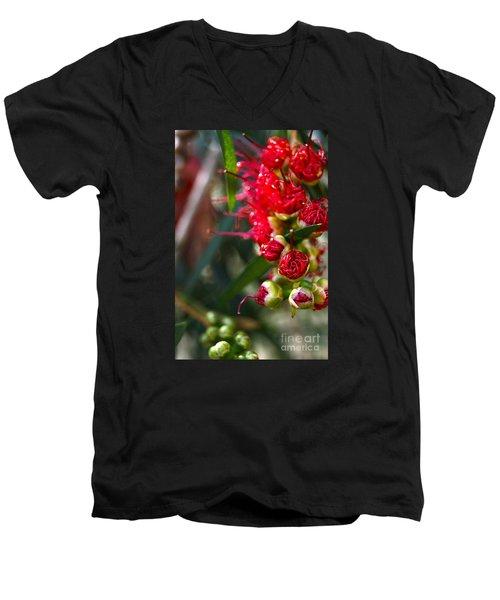 Bottlebrush Men's V-Neck T-Shirt