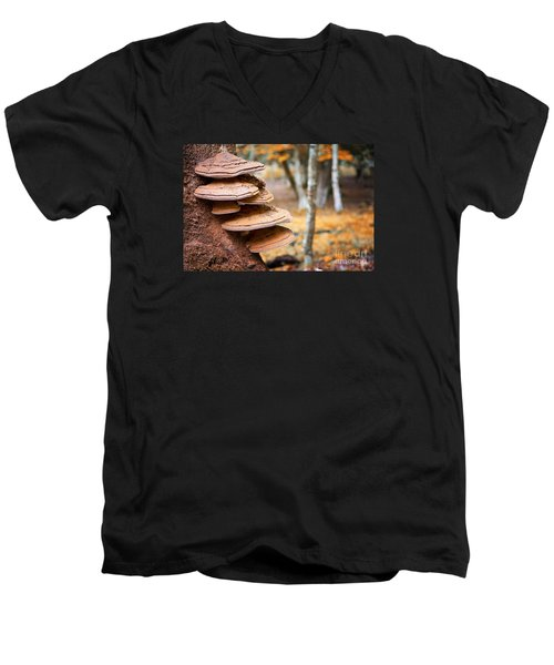Bracket Fungus On Beech Tree Men's V-Neck T-Shirt
