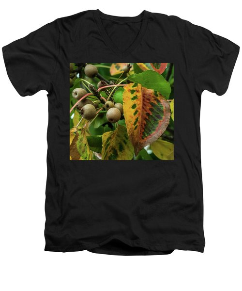 Bradford Pear Fruit And Leaves Men's V-Neck T-Shirt