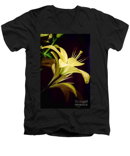 Brilliant Lily Men's V-Neck T-Shirt