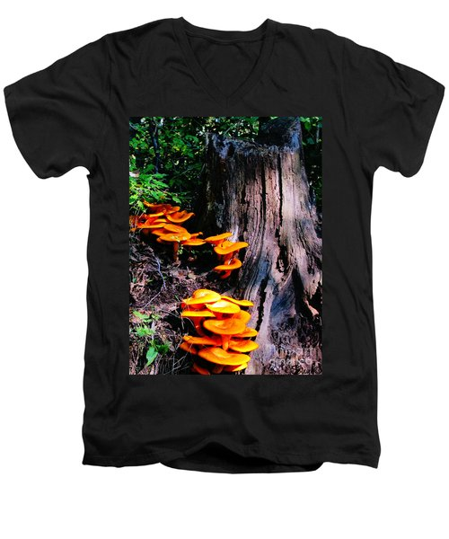 Brilliant Orange Men's V-Neck T-Shirt