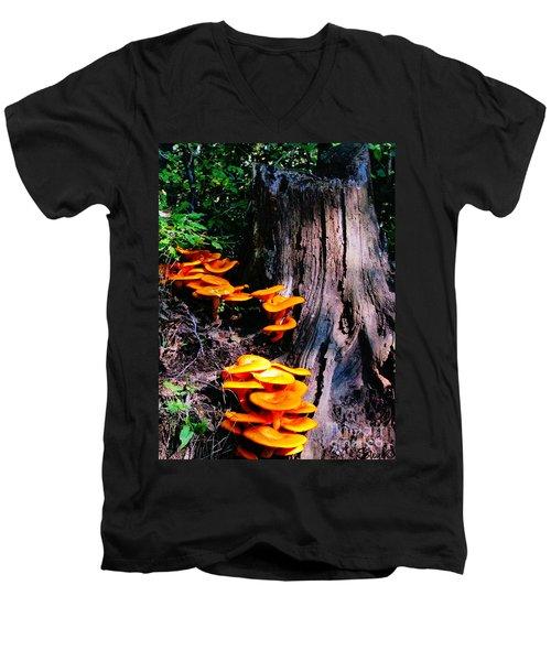 Brilliant Orange Men's V-Neck T-Shirt