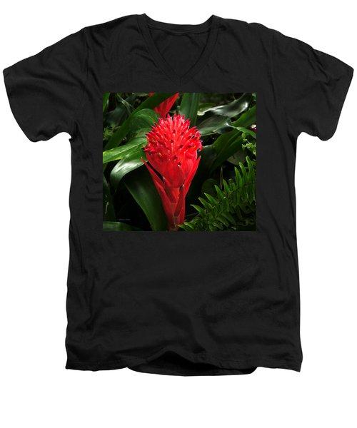 Bromeliad 9-18-15 Men's V-Neck T-Shirt