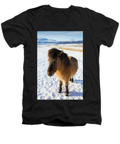 Men's V-Neck T-Shirt featuring the photograph Brown Icelandic Horse In Winter In Iceland by Matthias Hauser