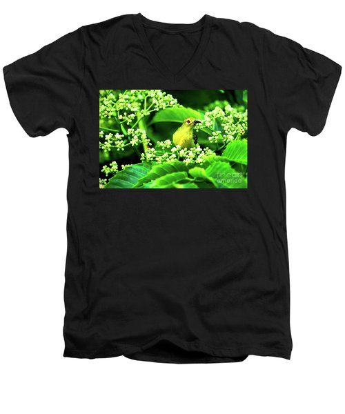 Men's V-Neck T-Shirt featuring the photograph Brown Neck Sunbird by Ray Shiu