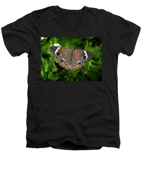 Buckeye Butterfly Men's V-Neck T-Shirt