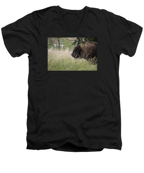 Men's V-Neck T-Shirt featuring the photograph Buffalo Gal 20120724_378a by Tina Hopkins