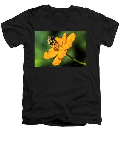 Bumble Bee And Flower Men's V-Neck T-Shirt