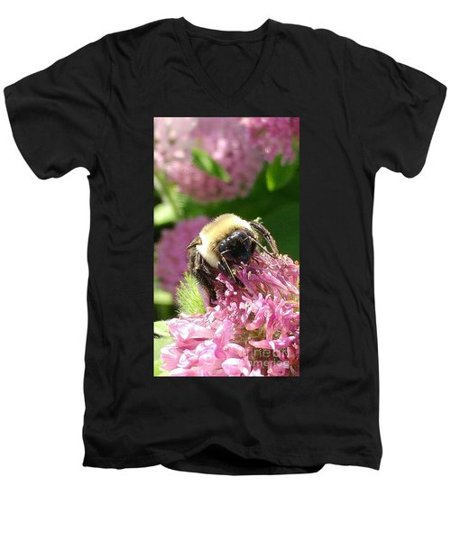 Bumblebee One Men's V-Neck T-Shirt